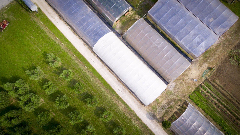 Ortofloricoltura & Agriturismo Le Moie