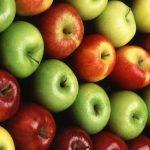 Mele Ortofloricoltura & Agriturismo Le Moie