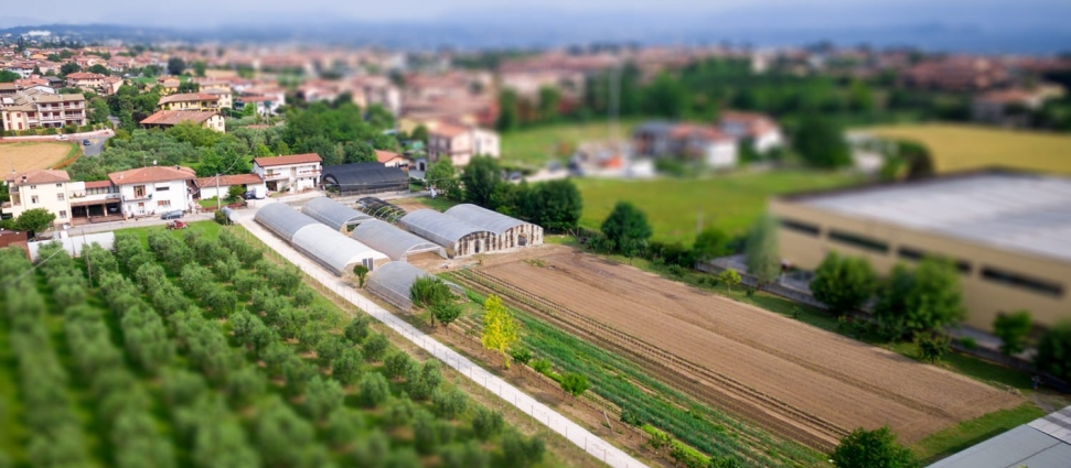 Le Moie Ortofloricultura & Agriturismo Desenzano Del Garda